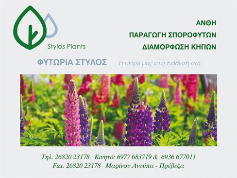 S-PLANTS ΕΜΠΟΡΙΟ ΑΝΘΕΩΝ ΦΥΤΩΡΙΟ ΠΡΕΒΕΖΑ ΣΤΥΛΟΣ ΔΗΜΗΤΡΙΟΣ